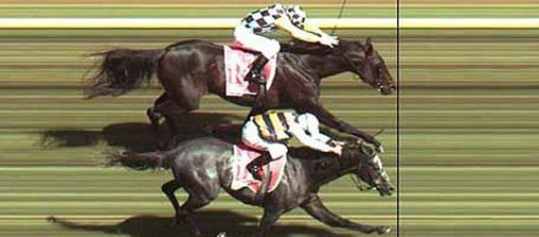 At Yarış Sonuçları Bursa 7 Eylül