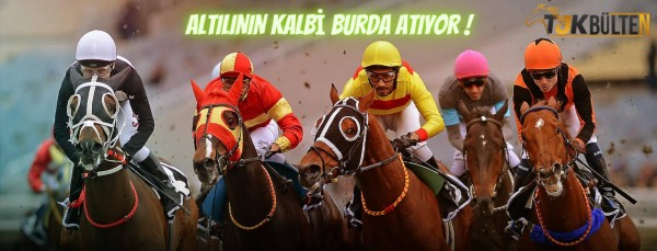 Tjk İstanbul At Yarışı Sonuçları 16 Ağustos 2020